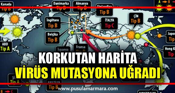 Korkutan harita! Virüs mutasyona uğradı üç koldan saldırıyor - 12 Nisan 2020 15:17