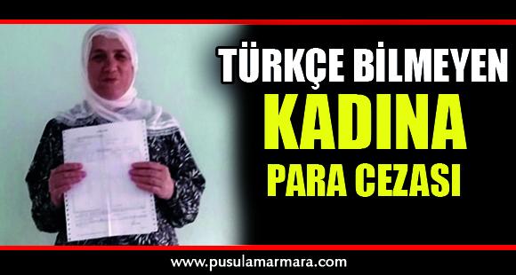 TÜİK'in Türkçe bilmeyen kadına kestiği para cezası Meclis'e taşındı